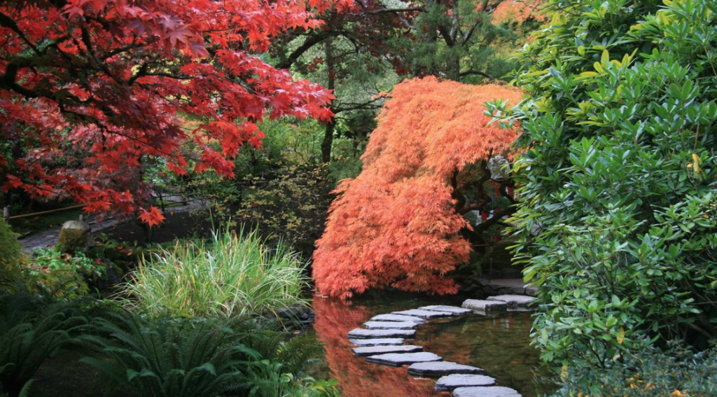 "Gartenart ""Japanischer Garten"""