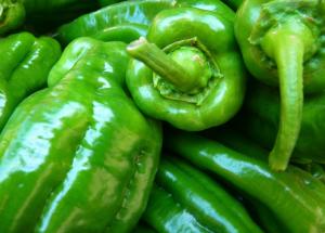 Schnecken lieben Paprika