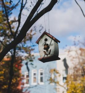 den garten winterfest machen gro er ratgeber 2019 laubgebl. Black Bedroom Furniture Sets. Home Design Ideas
