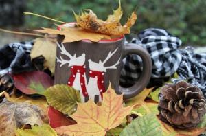 Herbstdünger für den Garten