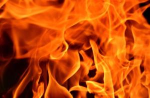 Miniermotte verbrennen