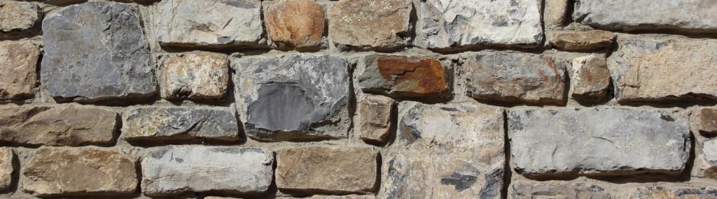 Wühlmäuse Mauer