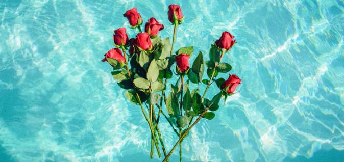 Rosen bewässern
