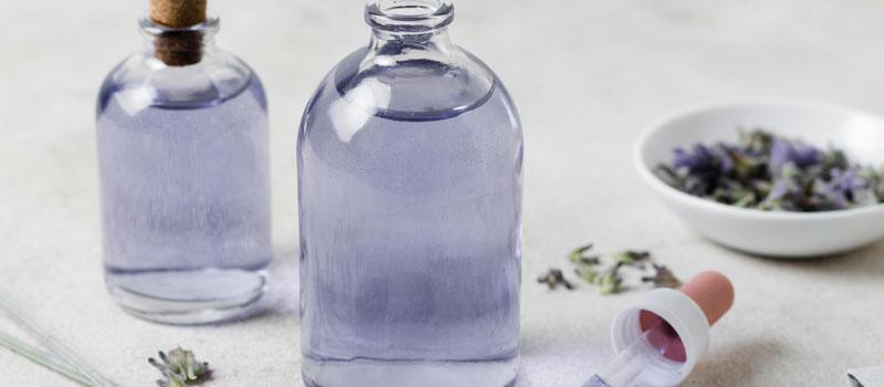 Mittel gegen Wespen im Dach: Lavendel